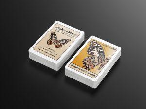 studio shakti biz card mock up.. jpeg V2
